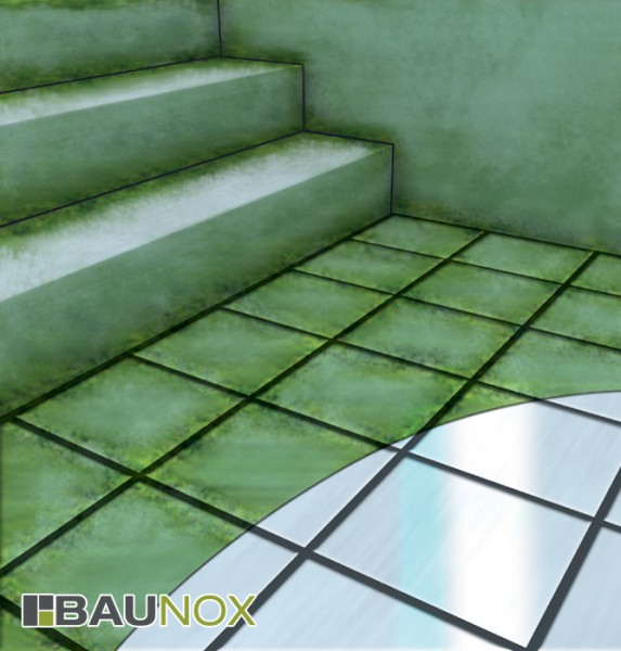 mem algen und gr nbelag entferner reiniger mem pflege. Black Bedroom Furniture Sets. Home Design Ideas