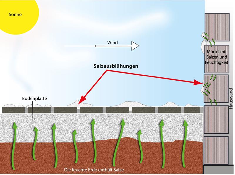 Hervorragend Feuchtigkeit bedingt die Entstehung von Salzausblühungen | Baunox VE89